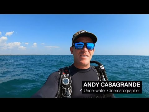 Video Of The Week | PADI | GoPro EDIT Evolution Contest - Andy Casagrande
