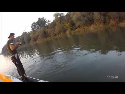 MAD FISHING TACKLE, Sava 2015 , ribolov umjetnim mamcima