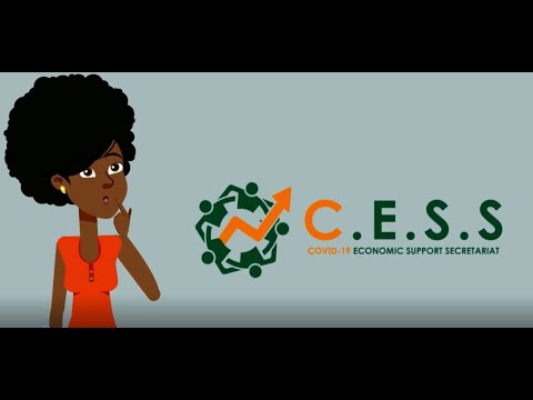 Payroll Support (Covid - 19 Economic Support Secretariat - CESS Grenada)
