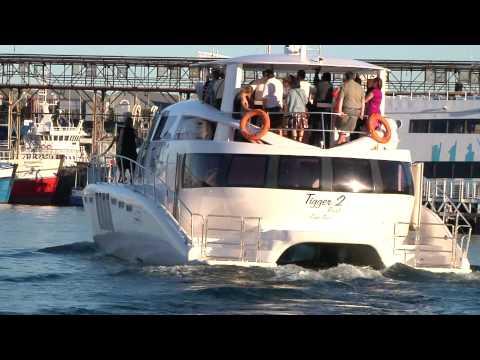Tigger 2  - Cape Town Charter Cruise