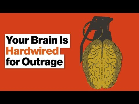 Why Your Brain Loves Feeling Outraged and Punishing People's Bad Behavior | Molly Crockett