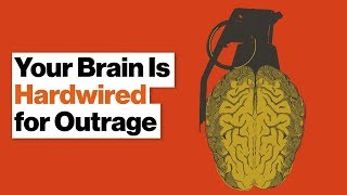 Why Your Brain Loves Feeling Outraged and Punishing People's Bad Behavior   Molly Crockett