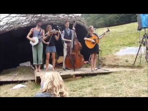 Market Barkers live at Wildtal OpenAir 2015