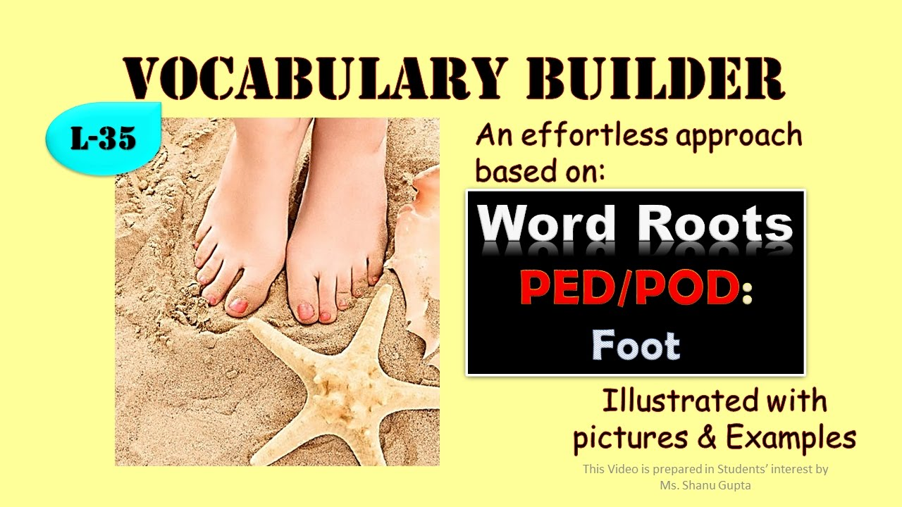 Word Roots: PED/ POD and derived words illustrated (Vocabulary L ...