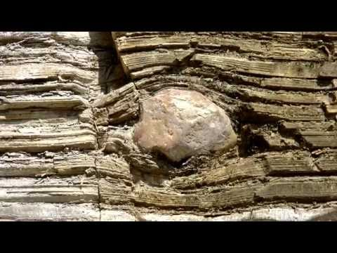 Dropstones don't disprove Noah's Flood