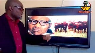 Receive Sense: Nigeria A Country Where Cow Is A Senior Citizen.
