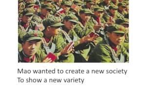The Chinese Communist Revolution