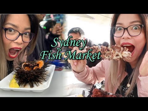 Sydney Fish Market Vlog 2019| The Best Seafood Place In SYDNEY!!!!| TOURIST SPOT