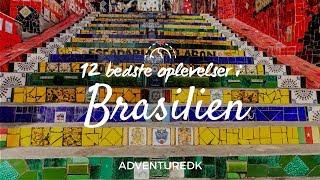 12 bedste oplevelser i Brasilien - ADVENTUREDK