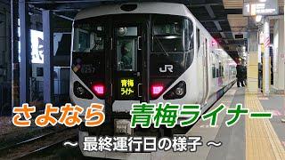 さよなら 青梅ライナー (JR東日本 E257系)
