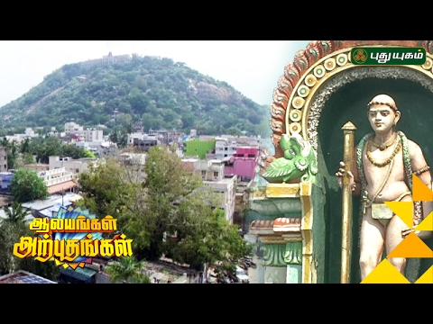 Palani Murugan Temple | Aalayangal Arputhangal | 31/01/2017