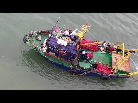 VL.ru - Дражный промысел моллюсков в Уссурийском заливе Владивостока