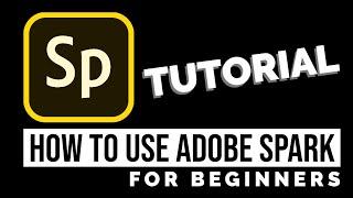 How to Use Adobe Spark - Beginner's Tutorial