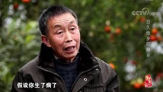 [中华优秀传统文化]日久他乡即故乡| CCTV中文国际