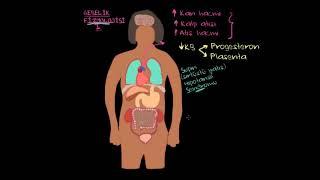 Gebelik (Hamilelik) Fizyolojisi I (Fen Bilimleri) (Sağlık ve Tıp)