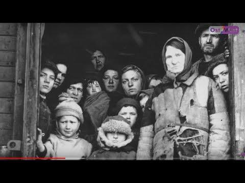 Немцы-переселенцы в Германии: