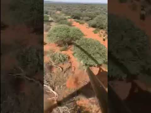 Randumb - Man Falls From Helicopter While Hunting On An African Safari