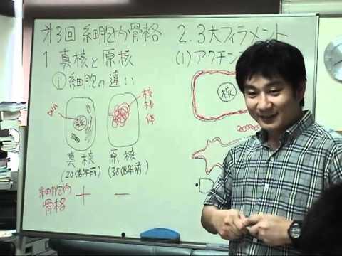 黒田裕樹の生物学講義〜分子生物学第3回『細胞内骨格』