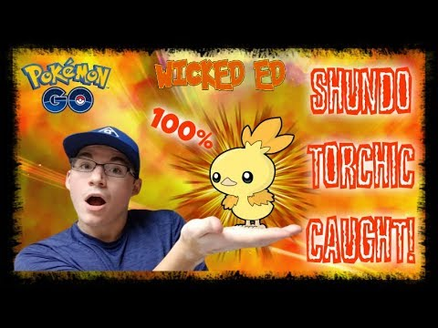 SHINY 100 IV TORCHIC CAUGHT! + MAX EVOULTION IN POKEMON GO!