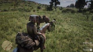 Red Dead Redemption 2_помогаем с лошадью