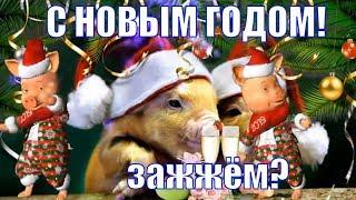 С НОВЫМ ГОДОМ 2019! Красивые веселые видео поздравления и пожелания в новый год