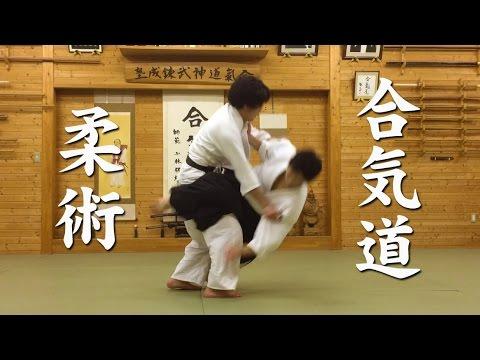 合気道と柔術 Aikido and Jiu-Jitsu techniques