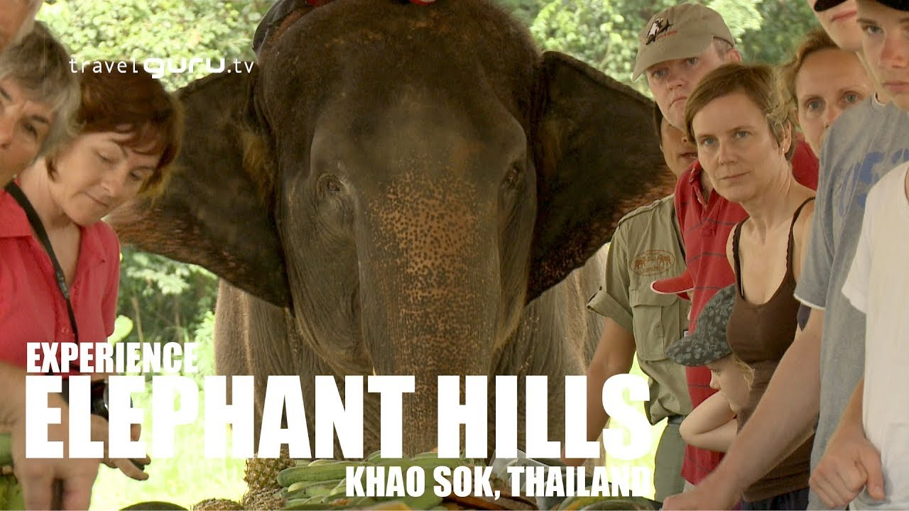Hills like whithe elephants