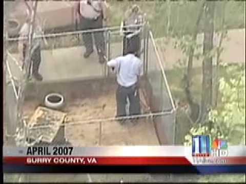 11 Alive Michael Vick Pit Bull Rescue By Brandon Bond