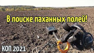 КОП 2021.В поиске паханных полей RUTUS Argo NE РУТУС Арго