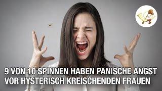 9 von 10 Spinnen haben panische Angst vor hysterisch kreischenden Frauen