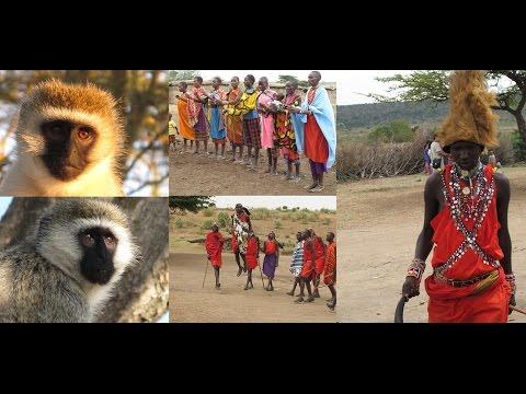 29. ΚΕΝΥΑ - KENYA: Nairobi, Great Rift Valley, Baringo, Nakuru, Naivasha, Masai (video)