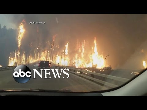 Canadian Wildfire State Of Emergency | City Evacuated