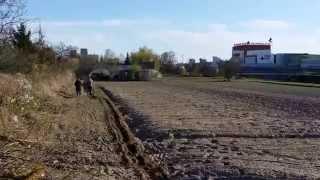 Koń, pług i dwaj rolnicy w Poznaniu blisko Plazy