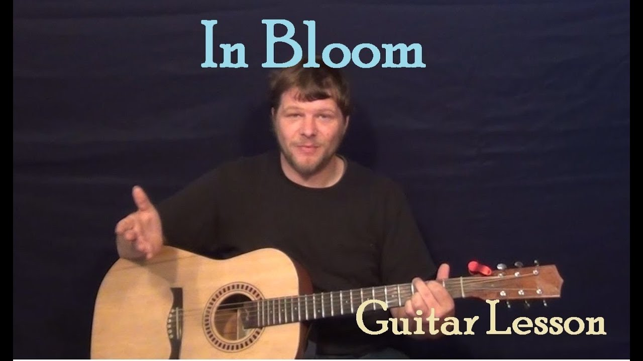 In Bloom Nirvana Guitar Lesson How To Play Tutorial Youtube