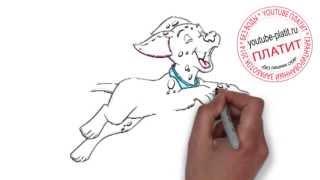 101 далматинец онлайн мультфильм  Как поэтапно нарисовать далматинца из мультфильма 101 далматинец