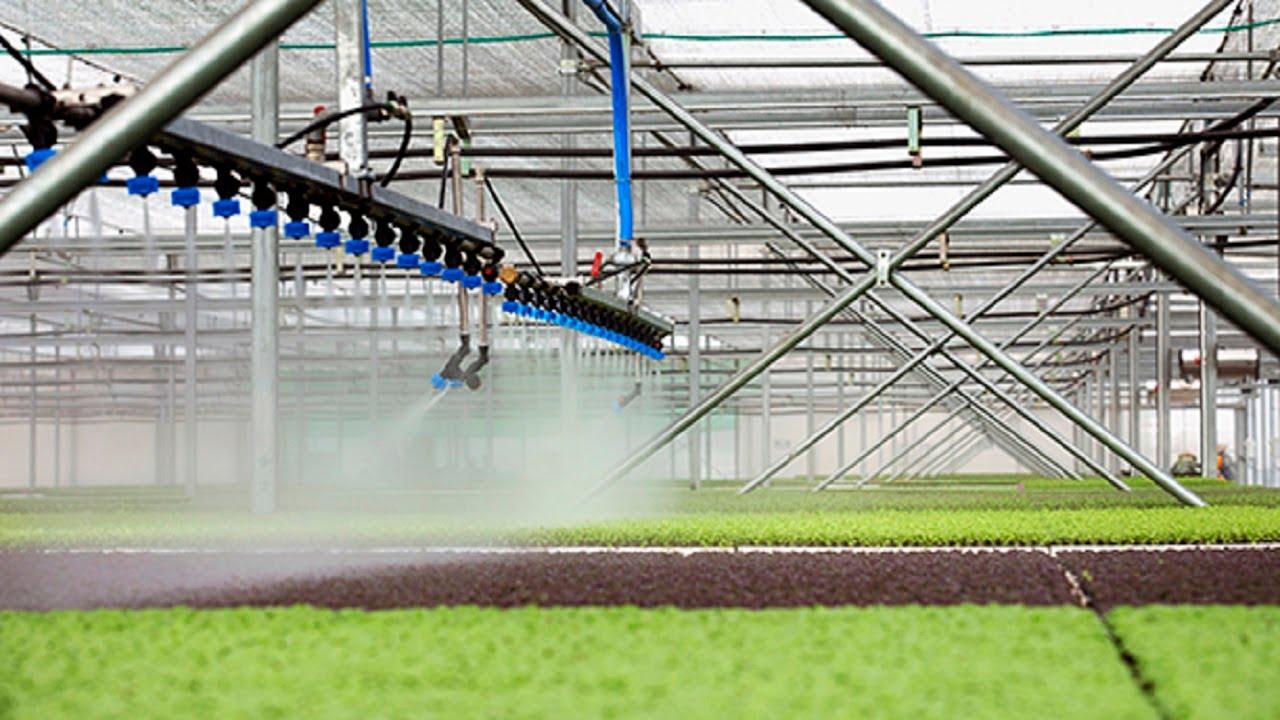 Nút thắt nguồn vốn nông nghiệp công nghệ cao tại TP.HCM | FBNC