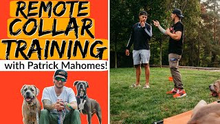 Introduction to E Collar Training In Kansas City with Patrick Mahomes