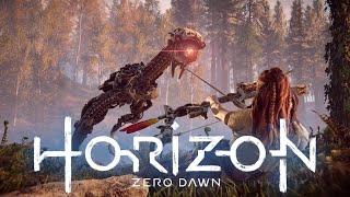 Casual Saturday - Horizon Zero Dawn
