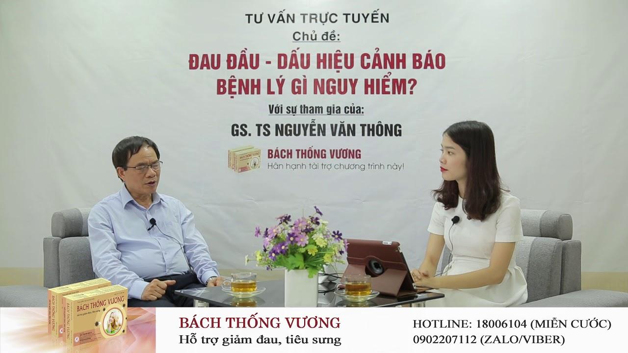 Vỏ cây liễu có tác dụng như thế nào trong việc giảm đau đầu? GS. TS Nguyễn Văn Thông phân tích