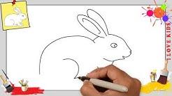 Hase zeichnen schritt für schritt für anfänger & kinder - Zeichnen lernen tutorial