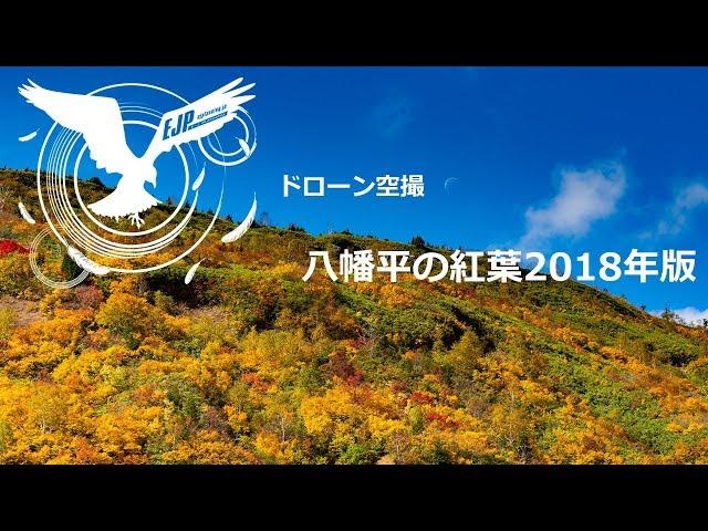 ドローン空撮 八幡平紅葉2018年版『フジTV プライムニュース イブニング お天気コーナー』映像提供