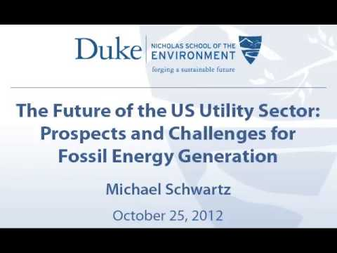 The Future of the US Utility Sector: Prospects and Challenges for Fossil Energy Generation