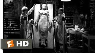 She's Alive! She's Alive! - Bride of Frankenstein (9/10) Movie CLIP (1935) HD