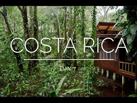 Costa Rica Day 7: Tortuguero arrival (Evergreen Lodge)