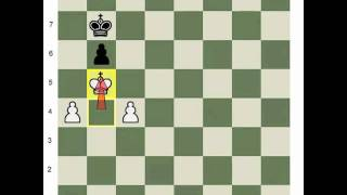 King and Pawn Endings: Stage 4