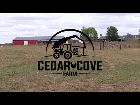 Download Welcome to Cedar Cove