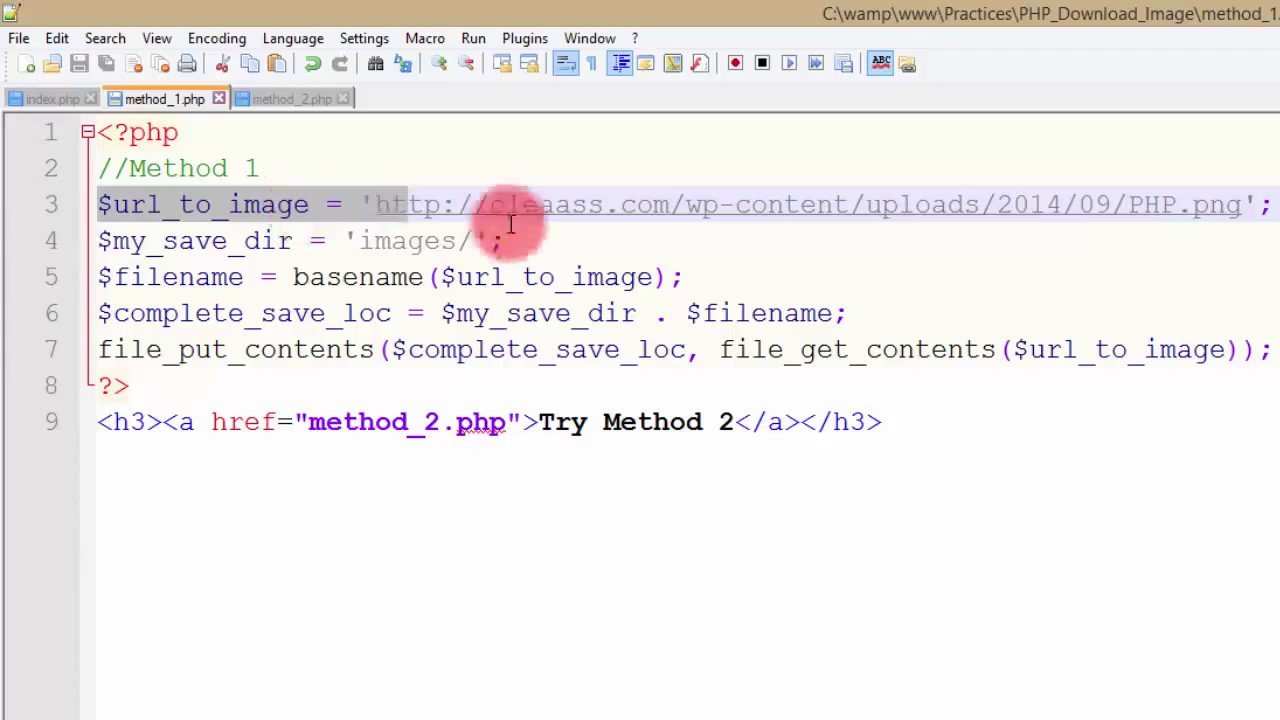 Download image from URL using PHP? 2 methods explained.