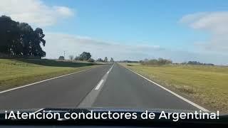LICENCIA DE CONDUCIR DIGITAL📲APP→« MI ARGENTINA »