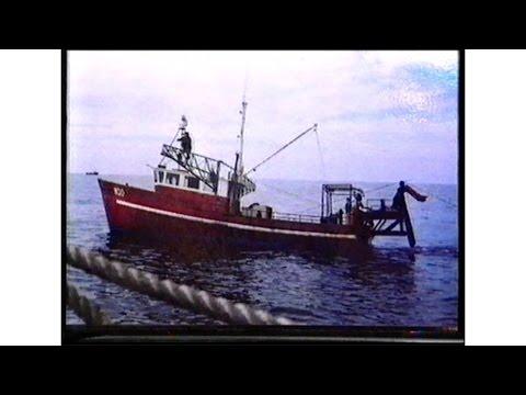 Ken Schwarzenbergs Fishing Boat The'Gungadin' Sinks in Bass Strait.
