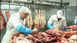 Купить мясо оптом в Украине - Мясокомбинат Meat Leader
